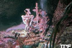 Sea-Life-Timmendorfer-Strand-(38)