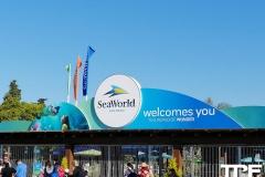 SeaWorld-San-Diego-1