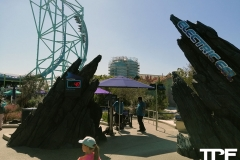 SeaWorld-San-Diego-27