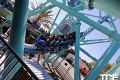 SeaWorld-San-Diego-31