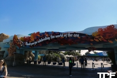 SeaWorld-San-Diego-44