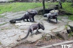 Śląskie-Zoo-24
