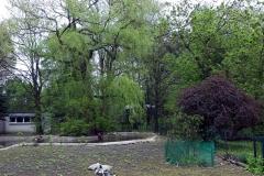Śląskie-Zoo-3