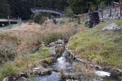 Steinwasenpark-13