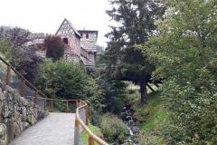 Steinwasenpark-21