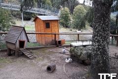 Steinwasenpark-42