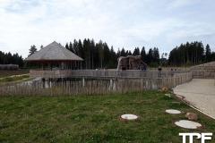 Tatzmania-15