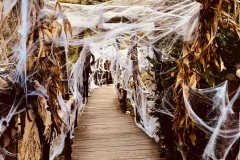 halloween taunus wunderland2