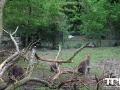 Tierpark-Nadermann-16-05-2014-(11)