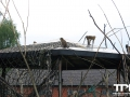 Tierpark-Nadermann-16-05-2014-(22)