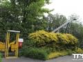 Tierpark-Nadermann-16-05-2014-(41)