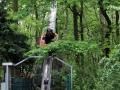 Tierpark-Nadermann-16-05-2014-(43)