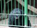 Tierpark-Nadermann-16-05-2014-(58)