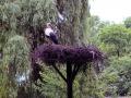 Tierpark-Nadermann-16-05-2014-(6)