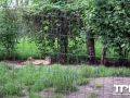 Tierpark-Nadermann-16-05-2014-(61)