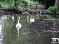 Tierpark-Nadermann-16-05-2014-(8)