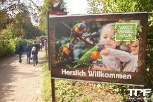 Weltvogelpark Walsrode - september 2019