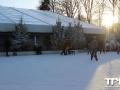 Efteling-11-01-2014-(86)