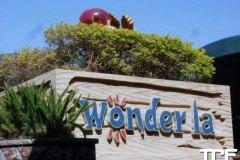Wonder-La-31
