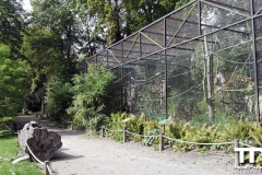 Zoo-Amiens-(15)