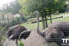 Zoo-Amiens-(19)