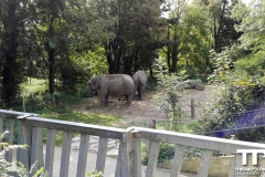 Zoo-Amiens-(29)