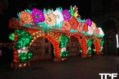 China-Light--(1)