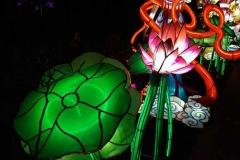 China-Light--(10)