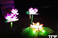 China-Light--(12)