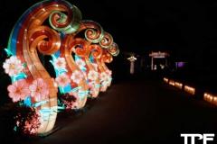 China-Light--(20)