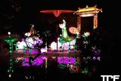 China-Light--(32)