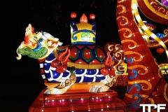 China-Light--(49)