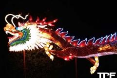 China-Light--(53)