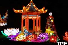 China-Light--(54)
