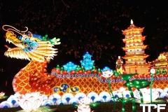 China-Light--(59)