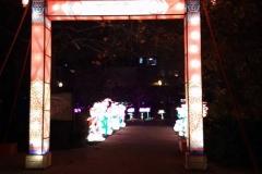 China-Light--(6)