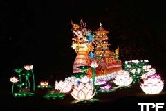 China-Light--(62)