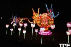 China-Light--(64)